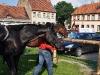 pony-ekspress_01