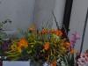 swieto-kwiatow_47